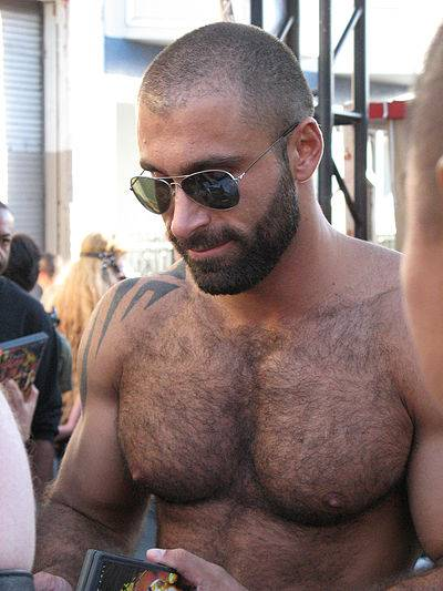 Urso gay